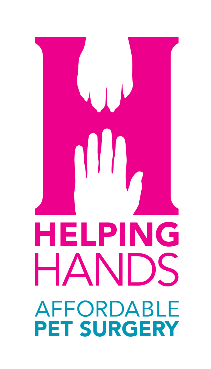 spotlight: helping hands affordable veterinary surgery & dental care